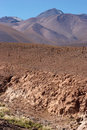 Dry Riverbed With Cacti, Atacama Desert, Chile Stock Photography - 13981072