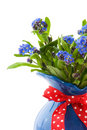 Forget-me-not Stock Images - 13983124
