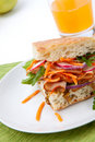 Turkey Breast Sandwich Royalty Free Stock Images - 14018799