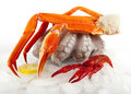 Seafood Served On Ice Royalty Free Stock Image - 14037046