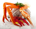 Seafood Served On Ice Royalty Free Stock Photo - 14037055