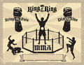 MMA Mixed Martial Arts Certificate Royalty Free Stock Image - 14069656