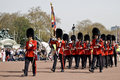 Changing Of The Guards In London Stock Images - 14090134