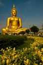 Big Buddha Royalty Free Stock Images - 14094879