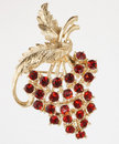Jewelry Pin With Red Grapes Royalty Free Stock Images - 14097199