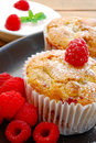 Gourmet Raspberry Muffins Stock Photos - 14113273