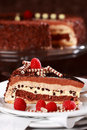 Delicious Chocolate Cake Royalty Free Stock Photography - 14151087