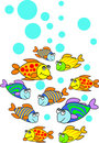 Fishes Stock Image - 14157141
