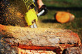 Cutting A Log Stock Images - 14162594