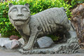 Cat In A Buddhist Garden Stock Photography - 14168072