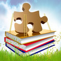 Books About Problem Solving And Solution Royalty Free Stock Images - 14170309
