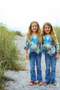 Happy Twin Sisters On The Beach Vertical Stock Image - 14186261