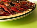 Red Lobsters Royalty Free Stock Photo - 1429325
