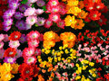 Artificial Flowers Stock Photography - 14213332