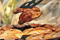 Grilled Chicken Breast Royalty Free Stock Image - 14221036
