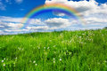Meadow With Rainbow Stock Photo - 14229260