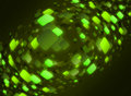 Abstract Flash Light Background Stock Photo - 14240350