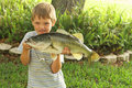 Cute Little Boy Showing Off His Bass Royalty Free Stock Image - 14252946