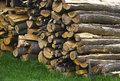 Wood Stock Images - 14283754