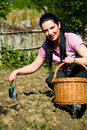 Happy Woman Working In Garden Royalty Free Stock Photo - 14287795