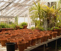 Pots In A Greenhouse Stock Photography - 14291222