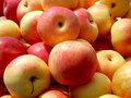 Apples Stock Images - 14307784