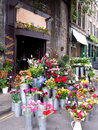 Flower Shop Stock Photography - 14355212