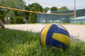 Sport Volleyball On Grass Stock Images - 1441824