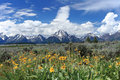 Grand Teton National Park Stock Photos - 14430023