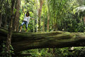 Woman Standing On A Tree In A Tropical Forest Stock Photos - 14455623