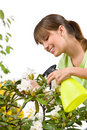 Gardening - Woman Sprinkling Water On Rhododendron Stock Image - 14459971