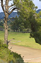 Ancient Olympia At Greece (the Stadium) Royalty Free Stock Photography - 14506377