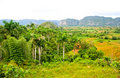Vinales Valley Royalty Free Stock Photo - 14538635