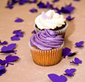Couple Of Blueberry And Chocolate Cupcakes Stock Photos - 14544873