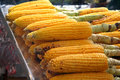 Corn On The Cob Stock Photo - 1469070