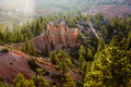 Bryce Canyon With Stone Formation And Trees Royalty Free Stock Photos - 14600548