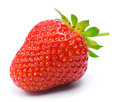 Strawberry Royalty Free Stock Photos - 14616888