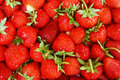 A Pile Of Strawberries Stock Photos - 14626513