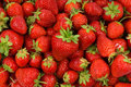 Strawberry Background Royalty Free Stock Image - 14633106