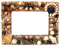Frame For Photo From Marine Cockleshells Stock Images - 14671804