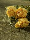 Dried Roses Stock Photos - 1473873