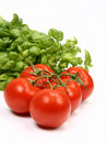 Tomatoes And Basil Royalty Free Stock Photography - 14727857