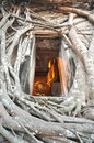 Buddha Vent Frame Root Wall Royalty Free Stock Image - 14749296