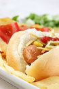 Close Up Of A Tasty Hot Dog Royalty Free Stock Image - 14754076