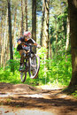 Cyclist In Forest Stock Images - 14761394