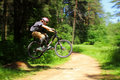 Cyclist In Forest Stock Image - 14763441