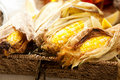 Grilled Corn Stock Photo - 14790720