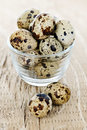Quail Eggs Royalty Free Stock Images - 14814179