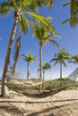 Hammocks In A Tropical Paradise Stock Photo - 14829150