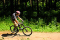 Cyclist In Forest Royalty Free Stock Photography - 14842077